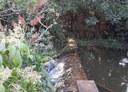 Parque Natural Municipal Paraíso do Cerrado é reestabelecido